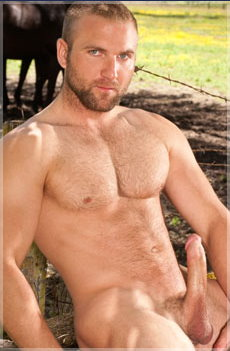 raging stallion men 11